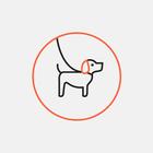 В Москве в день предполагаемой акции догхантеров зафиксирован один случай отравления собаки