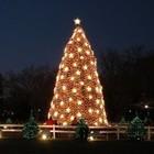 Что делать в Москве в новогоднюю ночь?