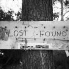 Потерянные вещи теперь можно найти в интернете