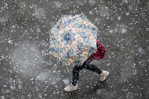Майский снег в Москве
