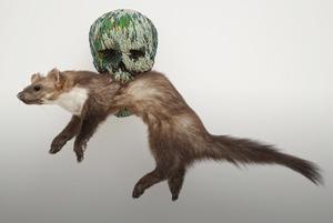 Дары смерти: Что нужно знать о выставке Яна Фабра в Эрмитаже