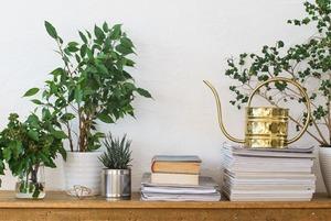 Дышите глубже: Как сделать воздух в доме идеальным