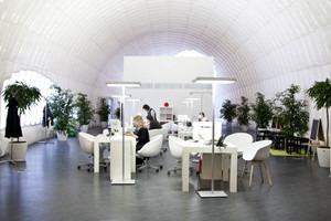 Офис недели (Москва): «В лесу»