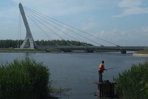 Как живёт район Петербурга у «кадыровского моста»