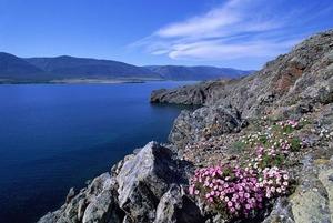 Заплыв по Байкалу, музыкальные гастроли и 3D-живопись