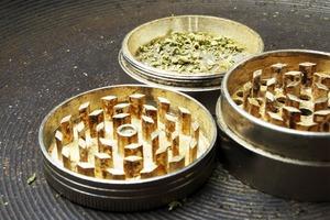 Чехи, испанцы, голландцы и американцы — о жизни после легализации марихуаны