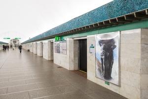 Как выглядит станция метро «Василеостровская» после ремонта