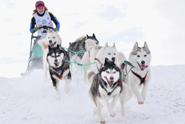 Планы на зиму: развлечения на свежем воздухе
