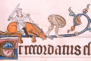 Авторы книги «Страдающее Средневековье» — о «дурацком епископе», гениталиях на стенах храмов и магии