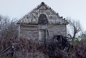 Художник Владимир Чернышев — о том, зачем ездить по заброшенным российским деревням