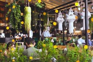 Новый гриль-бар Новикова, «Лето на Патриках» и манго-сет в «Бардели»