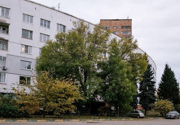 Я живу в белом радиусном доме на Федоровского