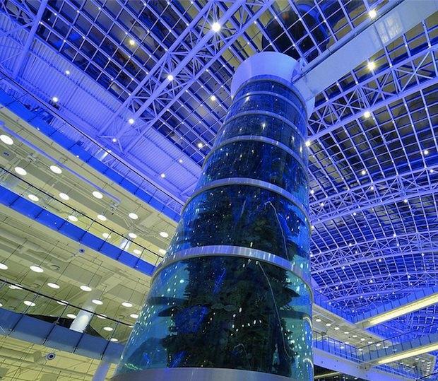 ВМоскве открывается торговый центр «Авиапарк» (обновлено). Изображение № 1.