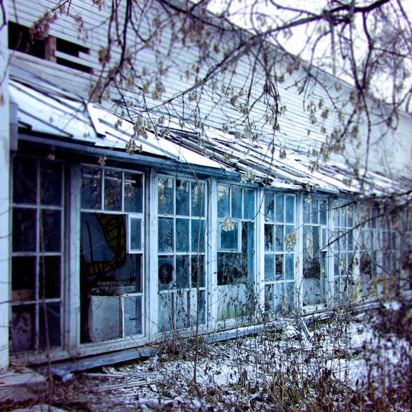 В зоне риска: Усадьба Покровское-Стрешнево. Изображение № 6.