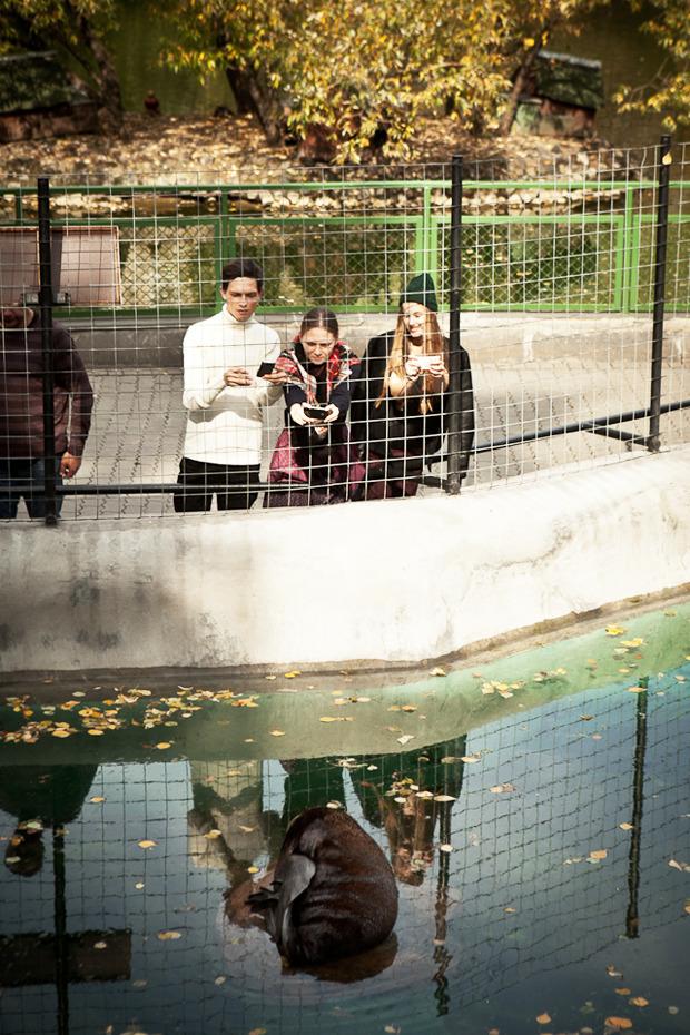 Cъёмка: Осень в зоопарке. Изображение №12.