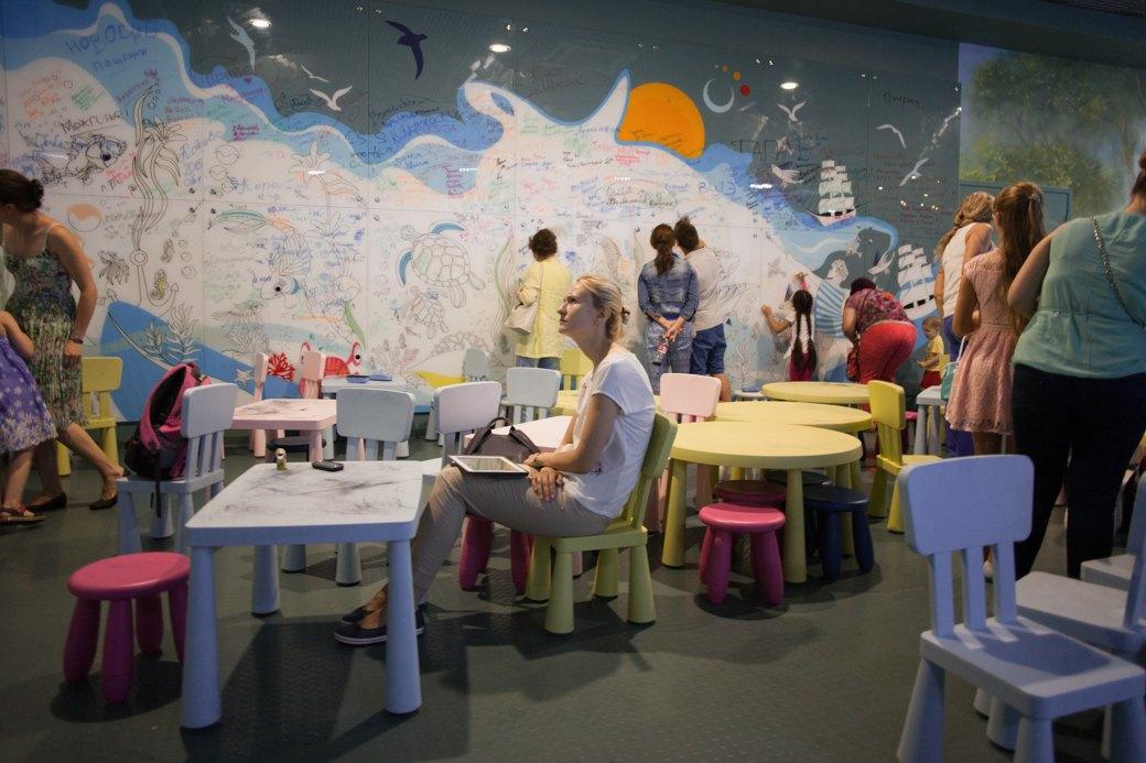 «Главные здесь — косатки, но самые милые — моржи»: На ВДНХ открылся океанариум. Изображение № 6.