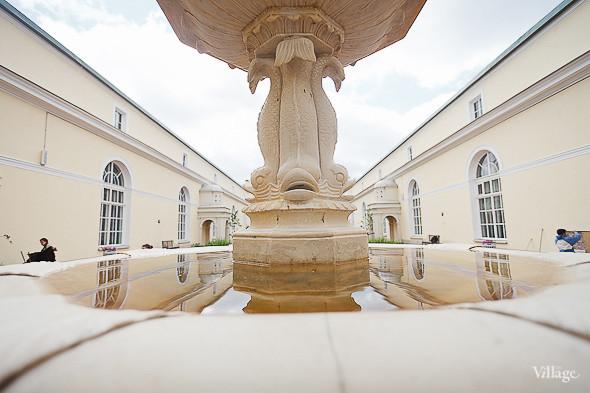 Фоторепортаж: Висячий сад Эрмитажа после реставрации. Изображение № 25.