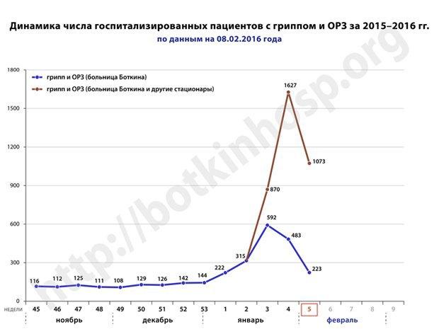 В Петербурге сократилось число госпитализированных сгриппом. Изображение № 1.
