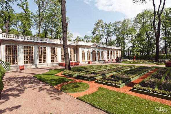 Фоторепортаж: Летний сад после реставрации. Изображение № 68.