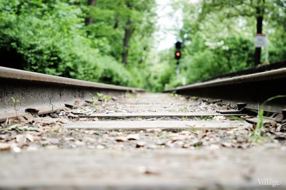 В Сырецком парке проложена узкоколейка шириной 75 см, что вдвое уже стандартного железнодорожного полотна.. Изображение № 2.