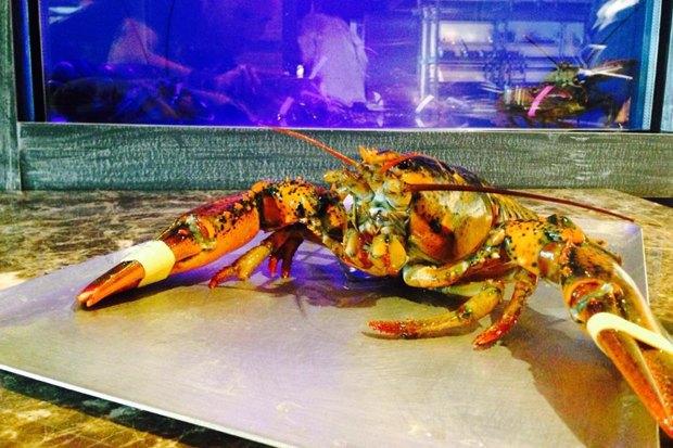 Рестораны «Охота налобстера» иZinger Grill, возобновившее работу «Море внутри», доставка «Пян-сё». Изображение № 1.