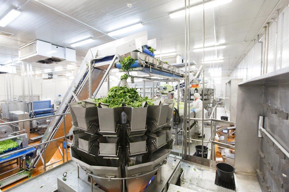 Производственный процесс: Как делают салаты для McDonald's. Изображение № 23.