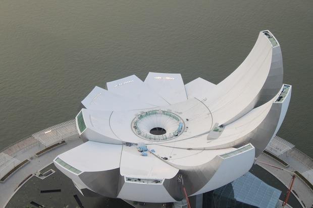 Дизайн от природы: Дом-лотос и супердеревья в Сингапуре. Изображение №15.