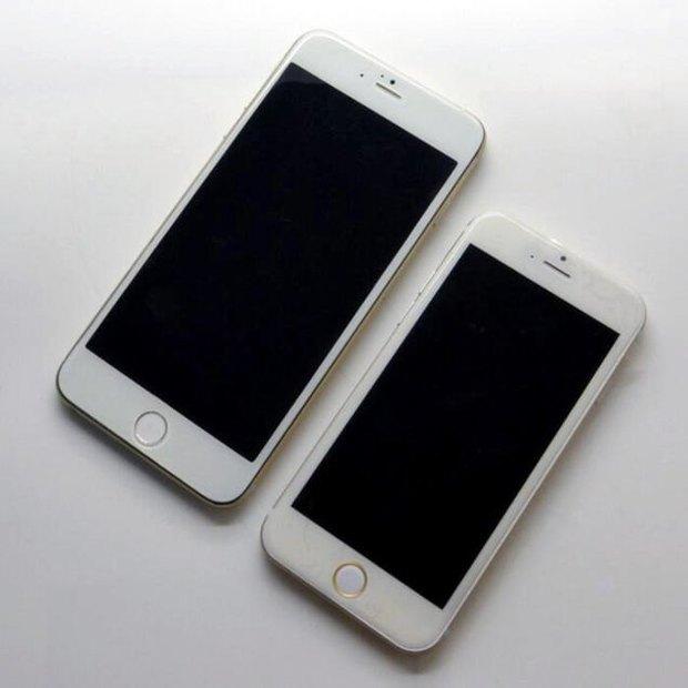 Apple заказала рекордную стартовую партию новых iPhone. Изображение № 1.