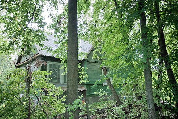 Дом на дереве: Жители Лахты за месяц до строительства небоскреба. Изображение № 34.