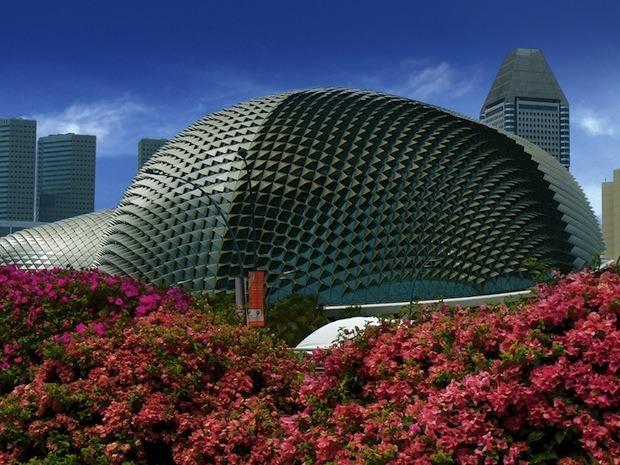 Дизайн от природы: Дом-лотос и супердеревья в Сингапуре. Изображение №3.