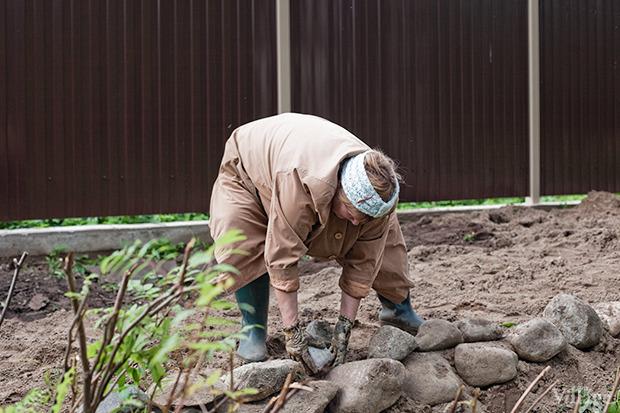 Дом на дереве: Жители Лахты за месяц до строительства небоскреба. Изображение № 10.