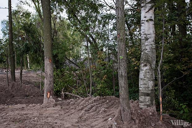 Дом на дереве: Жители Лахты за месяц до строительства небоскреба. Изображение № 24.