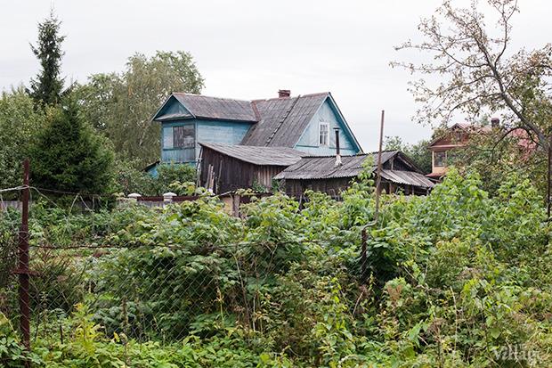 Дом на дереве: Жители Лахты за месяц до строительства небоскреба. Изображение № 29.
