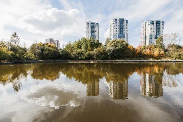 Чего хочет Москва: Четыре районных парка. Изображение № 30.