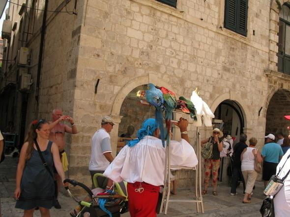 Изображение 28. Montenegro-trip.. Изображение № 34.