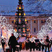 Новогодние каникулы в Петербурге: Бары и клубы, детские мероприятия и культурная программа. Изображение № 36.