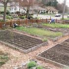Весёлый фермер: 6 городских огородов. Изображение № 9.