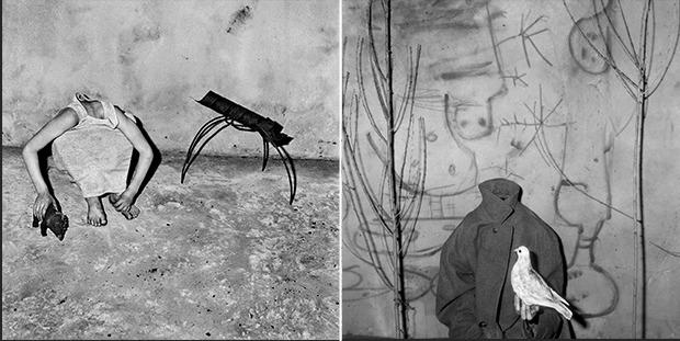 Фотографии Роджера Баллена впервые покажут в Петербурге. Изображение № 3.