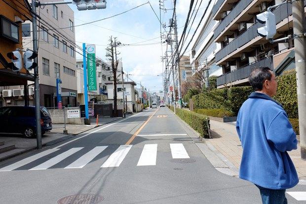 Митака, город соседа Тоторо. Изображение № 3.
