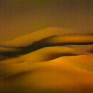 События недели: Toro y Moi, выставка Нэн Хувер испектакль Петра Мамонова. Изображение №3.