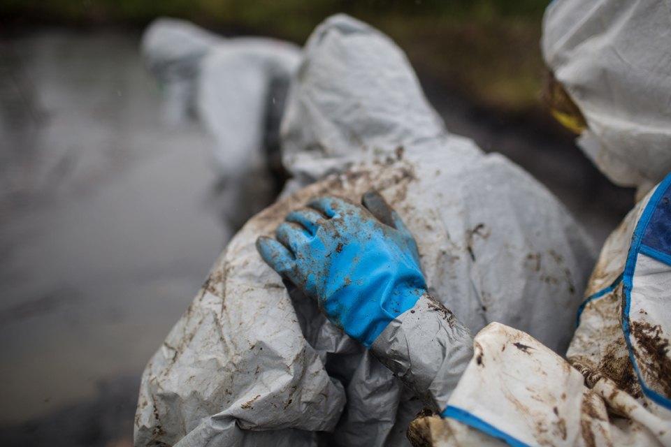Как леса Коми очищают от нефти. Изображение № 40.