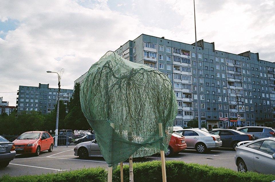 На районе: Выборгский глазами Игоря Симкина. Изображение №6.