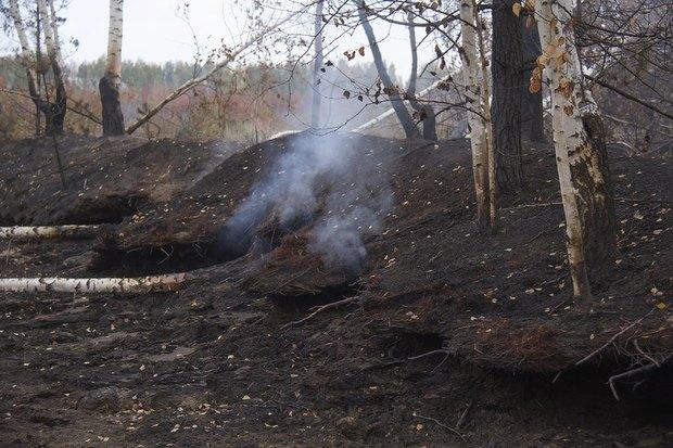 Greenpeace опричинах октябрьского смога вМоскве. Изображение № 2.