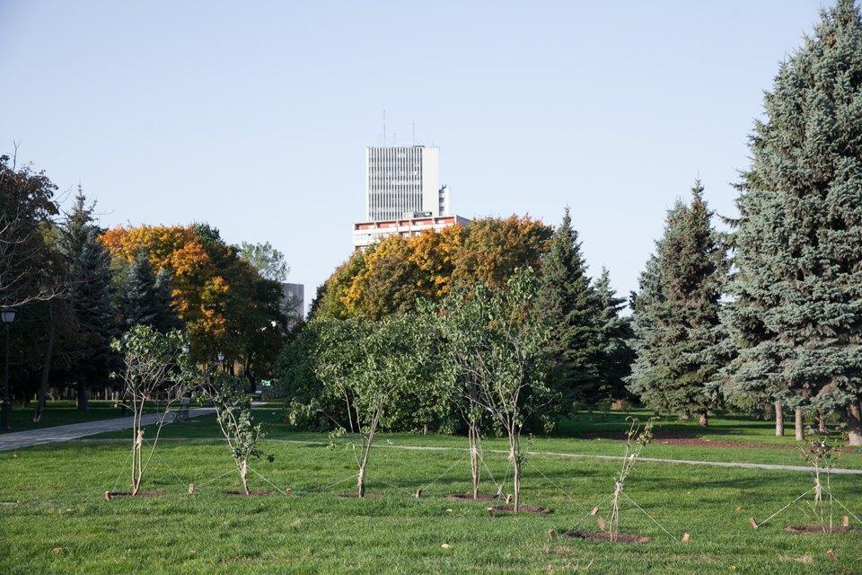 Обновлённый Сиреневый сад наЩёлковском шоссе. Изображение № 8.