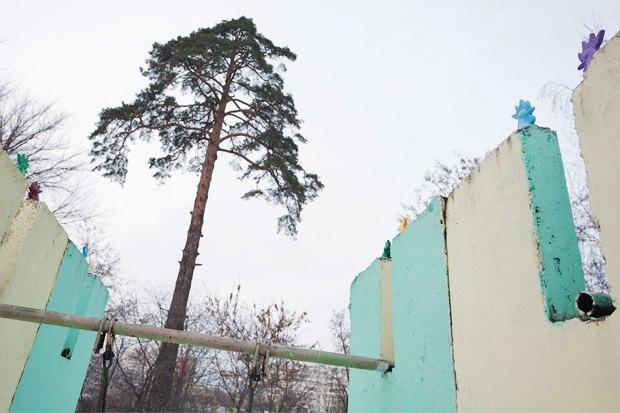 Киев — Петушки: Новый вид городского стрит-арта. Изображение № 21.