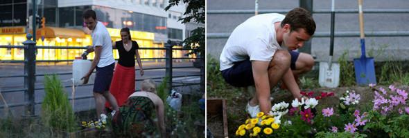 Последователи Dodo высаживают клумбу в самом центре Хельсинки, Kamppi, Helsinki. Изображение № 2.