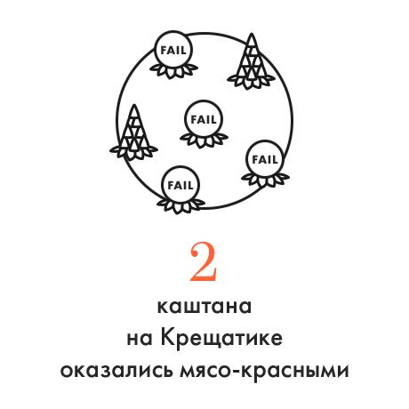 Цифра дня: Количество мясо-красных каштанов на Крещатике. Зображення № 1.