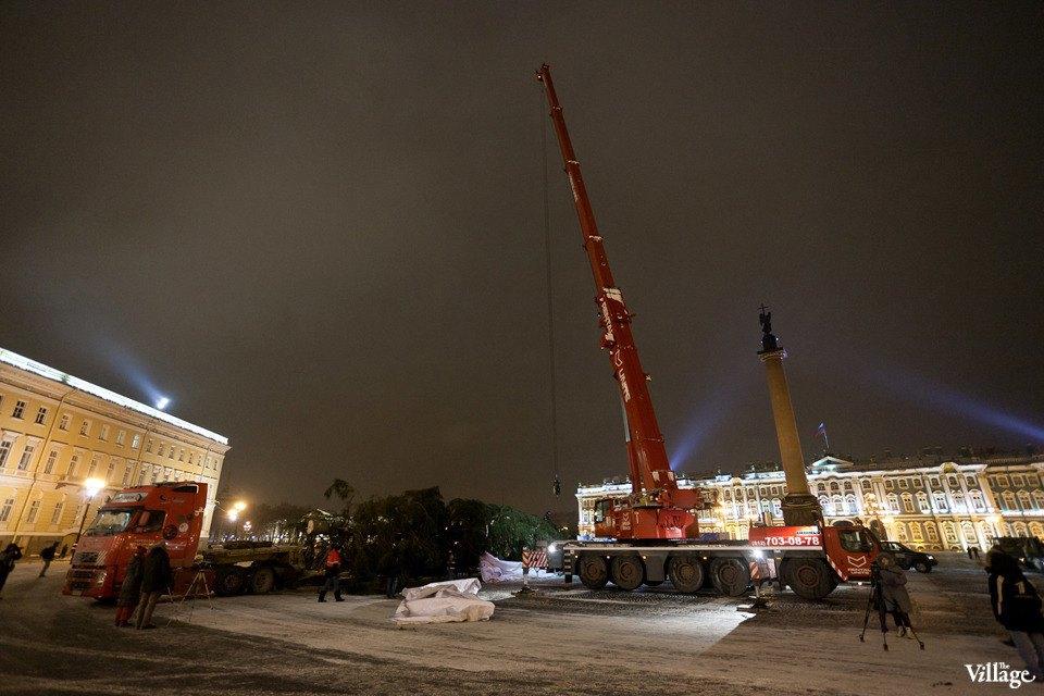 Фоторепортаж: Как устанавливали главную петербургскую ёлку. Изображение № 18.