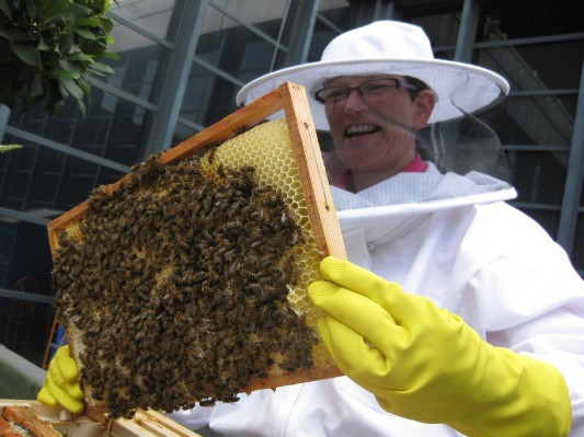 Как у них: «Городские пчёлы» в Лондоне. Изображение № 20.