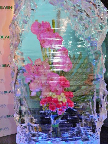 На Певческом поле выставят композиции из цветов во льду. Зображення № 1.